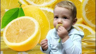 Babies Eating Lemons for the First Time Video For Kids Children
