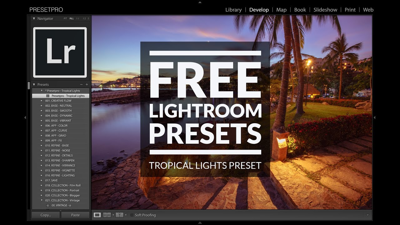 Free Lightroom Preset | Tropical Lights - Presetpro com