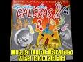 MIX CD GRITO DAS GALERAS Vol 02 DIRETO DOS FESTIVAIS 1998 DJ RANIELE