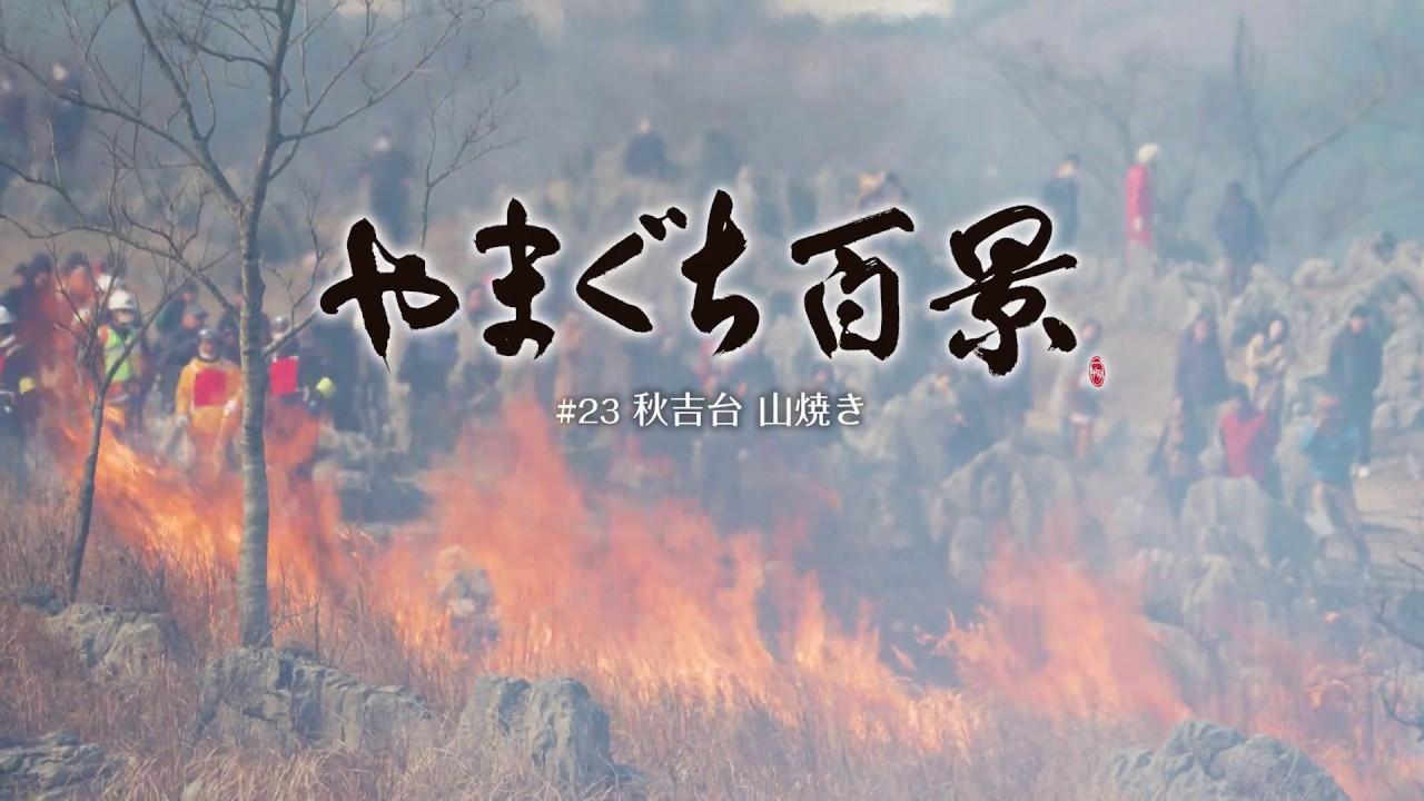 山焼き 秋吉台