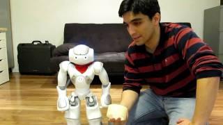 protecting the nao humanoid robot