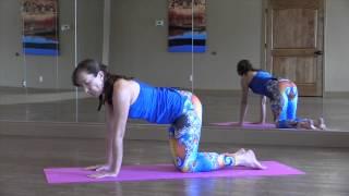 Four-Limbs Staff Pose (Chaturanga Dandasana)