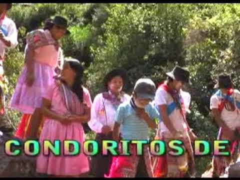 CONDORITOS DE PICHQAPUQUIO - Ichu Ccasay Huayllay Ichu
