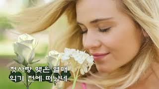 장윤정  💖카츄사의 노래💖 (가사)