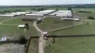 Продам ферму на 12000 голов