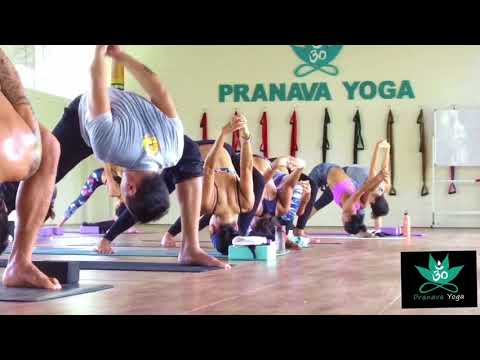 Yttc 200hours Udana Yoga Module 3 at Pranava Yoga