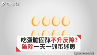 吃蛋膽固醇不升反降? 破除一天一雞蛋迷思