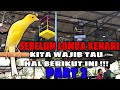 Tips Sukses Lomba Kenari Part   Mp3 - Mp4 Download