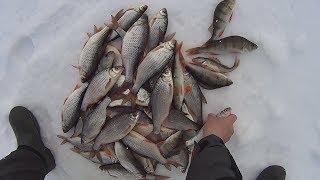 Рыбалка с Соней. Часть 2. Ловля плотвы и окуня на мормышку. Весенняя рыбалка. Fishing.