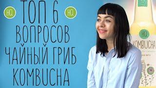 ТОП 6 самых популярных вопросов директ о чайном грибе комбуче | HQ Kombucha
