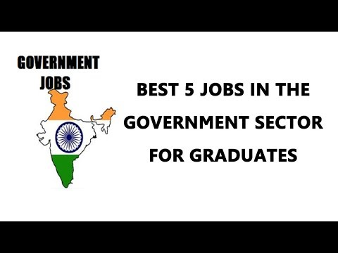 Best 5 Jobs in the Government Sector for Graduates