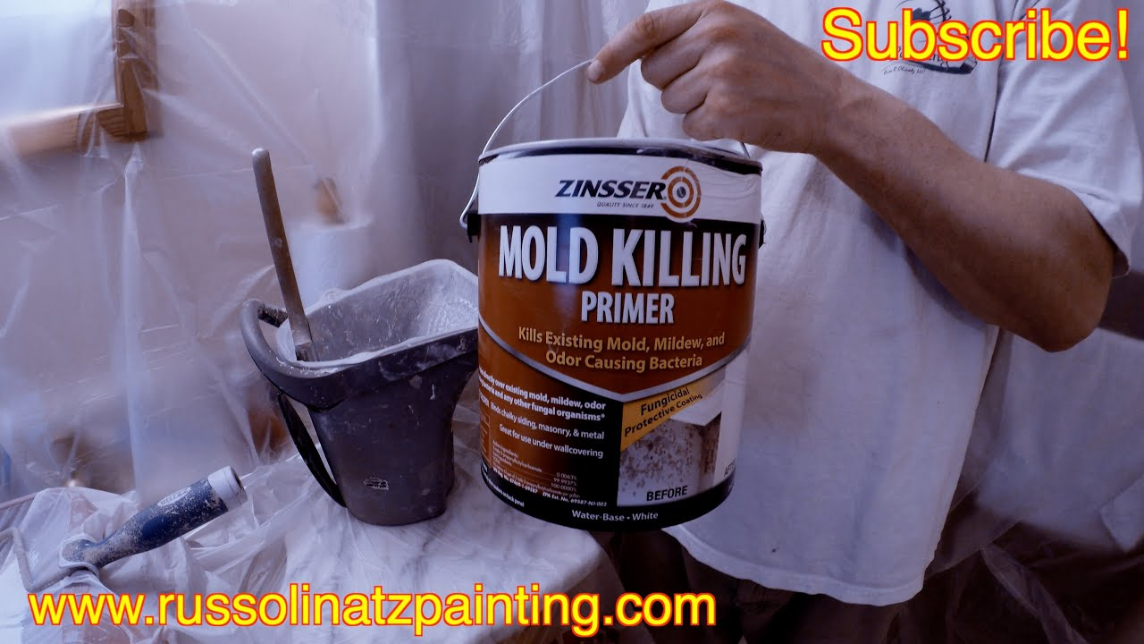 How to kill Mold and Mildew Stains on a Shower Ceiling Part 2