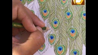 How to Hand ART Beautiful Peacock Designer Hands Tattoo Art