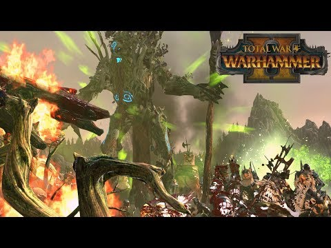 CAN\'T TRANSMUTE WOOD - Wood Elves vs Empire // Total War: Warhammer II Online Battle