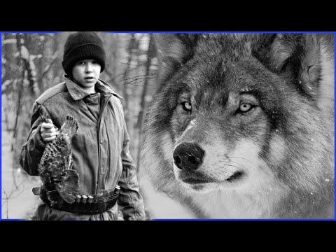 Вопрос: Как волк справляется с дикообразом, чтобы его съесть?