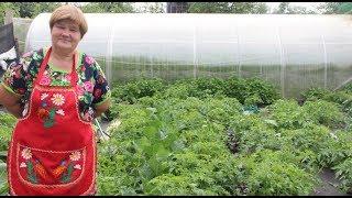 видео Во саду ли, в огороде...