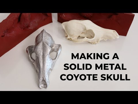 Making a Solid Metal Coyote Skull | Casting Molten Tin