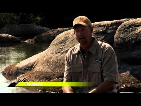Wild Niassa Leopard FULL NMTV Ep 3 2012