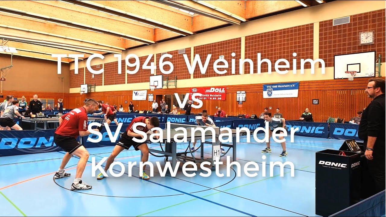 check out a028a 69e73 3. Bundesliga: TTC 1946 Weinheim vs SV Salamander Kornwestheim [ 2018/2019 ]