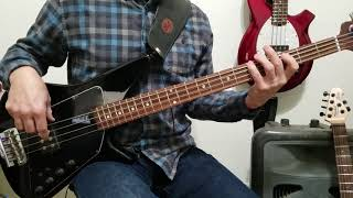 Lemonheads - Steve's Boy Bass Cover