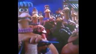 Vine: right on cue, they panicked (chicken run)
