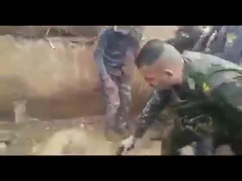 على نهج ( القائد صدام حسين). بالفيديو .. صباح حاتم