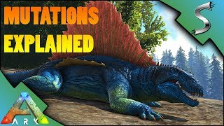 WHAT ARE MUTATIONS AND HOW DO YOU GET THEM COLOR  STAT MUTATIONS EXPLAINED - Ark Survival Evolved