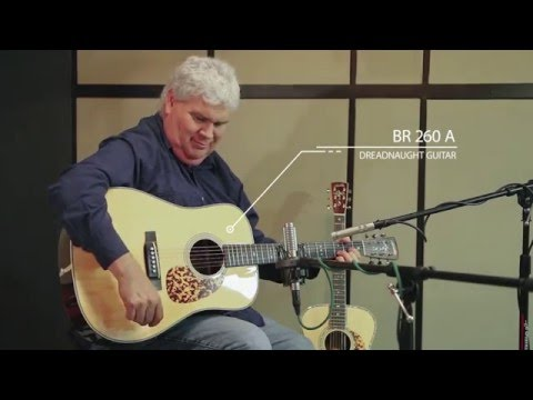 Blueridge Acoustic Guitar Demo (8 models)