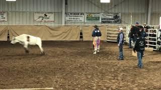 Rhett bareback Saturday HYRA