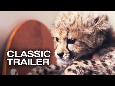 Duma (2005) Official Trailer #1 - Cheetah Movie HD