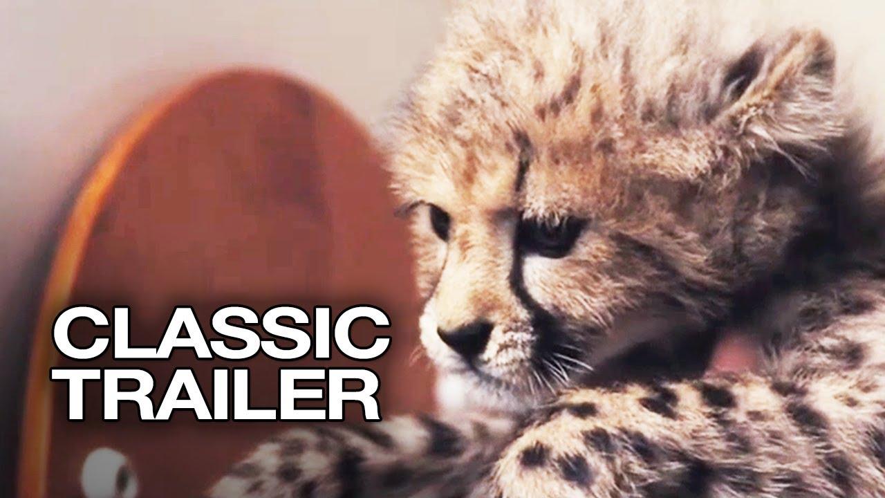 Duma 2005 Official Trailer 1 Cheetah Movie Hd Youtube