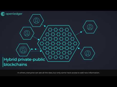 Blockchain Explanatory Video By OpenLedger ApS