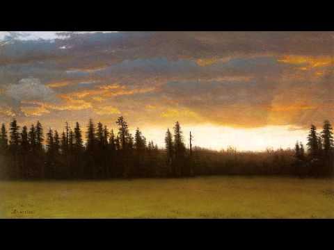 C.P.E. Bach - Harpsichord Concerto in C minor, H. 448 / Wq 37 (Ludger Rémy & Les Amis de Philippe)
