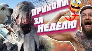 ПОДБОРКА СМЕШНЫХ ПРИКОЛОВ ЗА НЕДЕЛЮ 2019