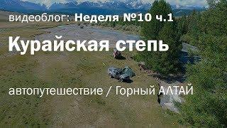 Курайская степь. Автопутешествие на Газель 4х4 на Горный Алтай. Неделя 10