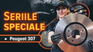 Întreținere Peugeot 307 SW - tutoriale video gratuit