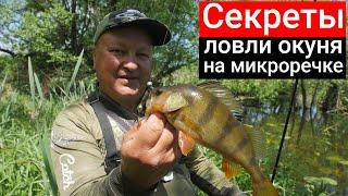 СЕКРЕТЫ ЛОВЛИ ОКУНЯ ЛЕТОМ на малой реке первая рыбалка на спиннинг после запрета