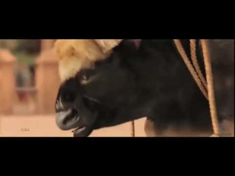 Bhubali Video