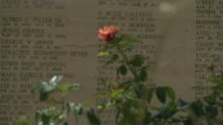 Local cemetery makes unique offer to those holding onto ashes