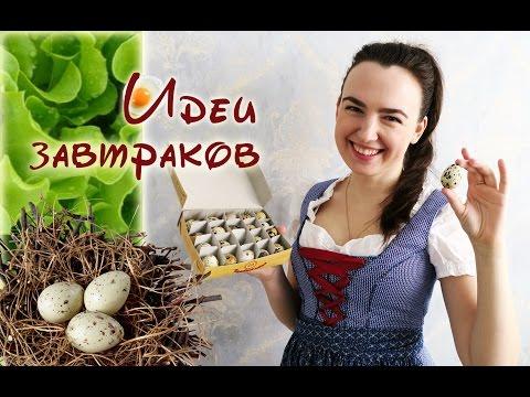Узнай порчу по яйцам! — Всё самое интересное!