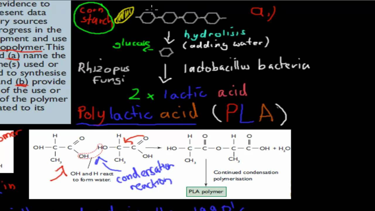 organism used to synthesise pla Lactic acid is produced by the group of lactic acid producing bacteria by  fermenting  synthesised is governed by the bacterial strain being used and the  carbon  polylactic acid is another biodegradable polymer which has been  explored.