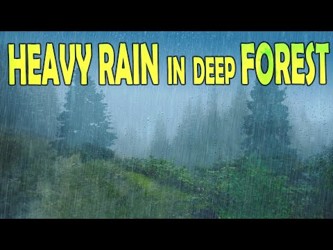 🎧 Heavy Rain & Thunder in Deep Forest - Ambient Sleep & Meditation Sounds, @Ultizzz day#80