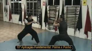 Aula de kung fu no Instituto Mao Lee Chi, Shifu Carlos Moreno