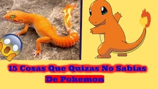 15 Cosas Que Quizás No Sabías De Pokemon