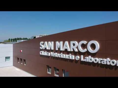 San Marco Srl.Nicolli Srl San Marco Veterinary Clinic