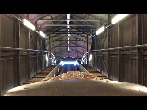 Re-Opening Of The Rocky Hollow Log Ride (2018) - Dreamworld Australia