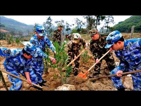 China Orders Army of 60,000 Soldiers to Plant Trees Around Beijing
