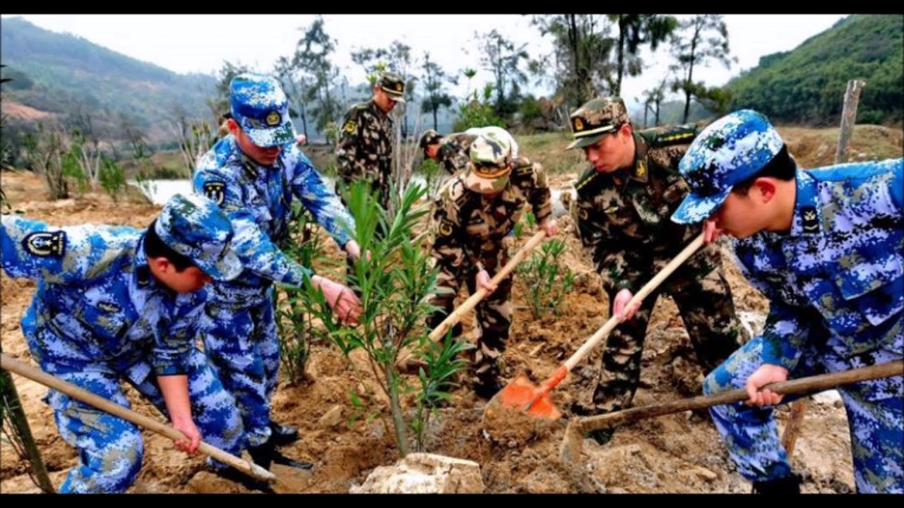 Image result for china soldiers planting trees