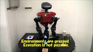Online Knowledge Acquisition and General Problem Solving in a Real World by Humanoid Robots