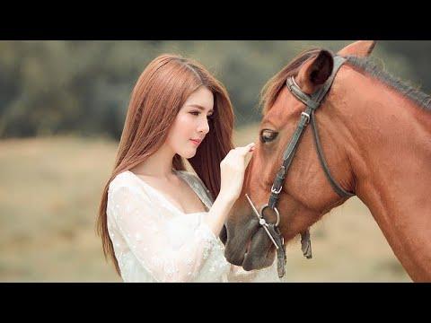 perkawinan manusia dengan kuda. / human marriage with horse. #kawinsilang